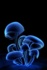 3D Blue Fluorescent Mushrooms Android Wallpaper