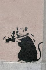 Banksy Rat Paparrazi Android Wallpaper