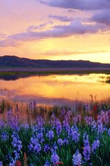 Beautiful Prairie Sunset Idaho Usa Android Wallpaper