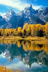 Beautiful Grand Teton National Park Android Wallpaper