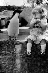 Cute Girl And Penguin Android Wallpaper