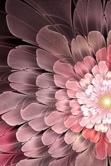 Flower Abstract Pink Android Wallpaper